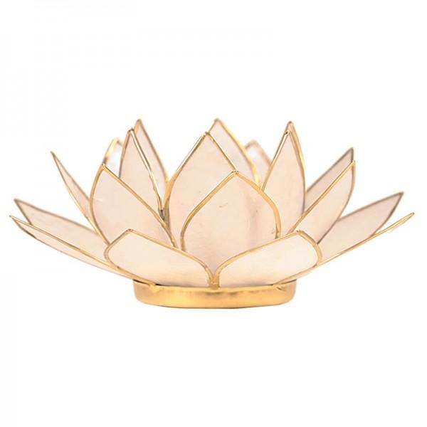 Lotus Atmospherisch Licht Goldrand natur