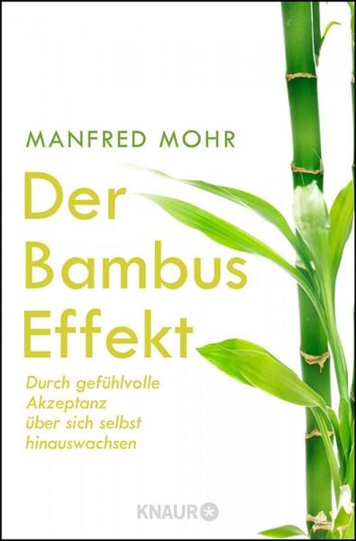 Der Bambus Effekt