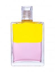 Aura-Soma® Equilibrium B22 Flasche der Rebirther