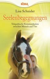 Seelenbegegnungen - Lisa Schnider